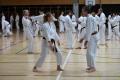 180427-29 - 25ans Ticino Shotokan 101