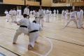 180427-29 - 25ans Ticino Shotokan 025