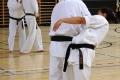 180427-29 - 25ans Ticino Shotokan 041