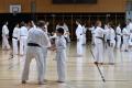 180427-29 - 25ans Ticino Shotokan 099