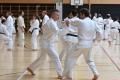 180427-29 - 25ans Ticino Shotokan 128