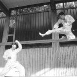 1994 - Andrea Berri associa umorismo ed effetti speciali e fa risultare tobi gueri.